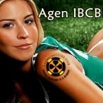 ibcbet dan Agen ibcbet